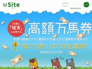 Site (サイト)の評価・評判、口コミ情報や競馬予想を評価検証